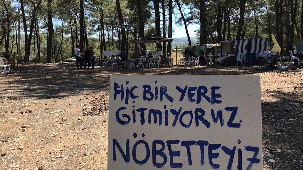 'Devlet nerede?' sorusunun yanıtı belli oldu: Ağaçları için nöbet tutan köylünün karşısında – Emine Akbaba